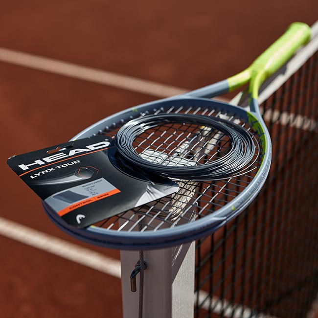tennis racquet with a tennis strings on top